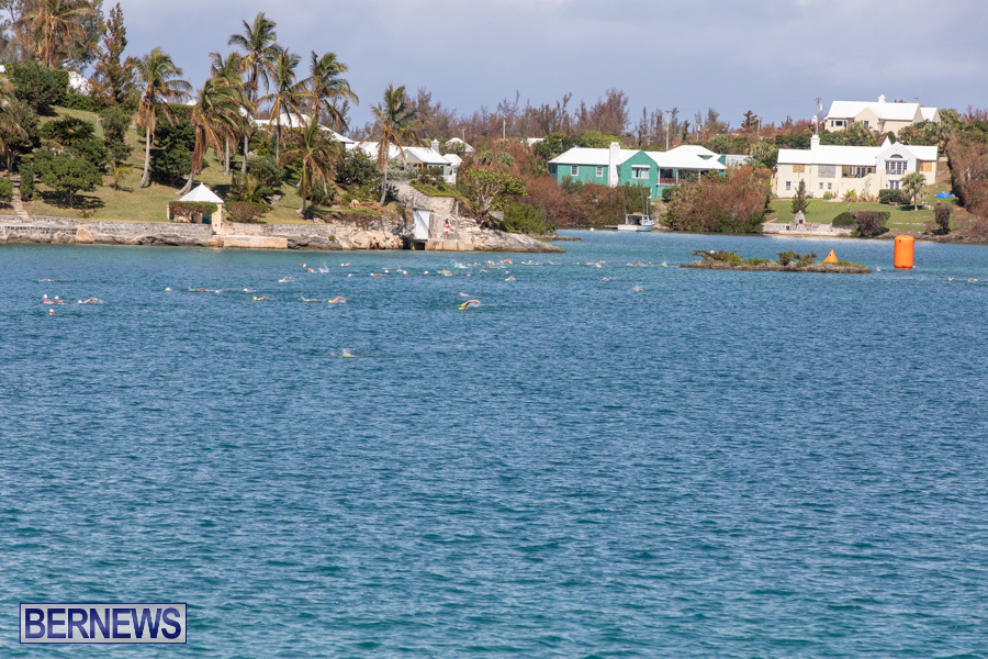 Round-the-Sound-Swim-Bermuda-October-13-2019-6078