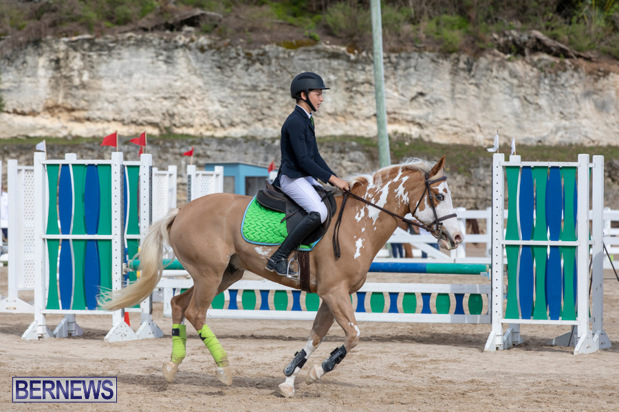 Caribbean-Equestrian-Association-Regional-Jumping-Challenge-Bermuda-November-16-2019-2021