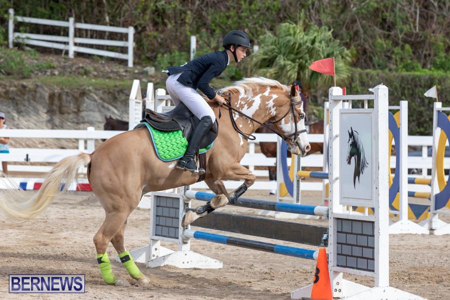 Caribbean-Equestrian-Association-Regional-Jumping-Challenge-Bermuda-November-16-2019-2022