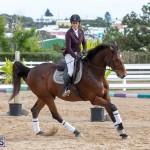 Caribbean Equestrian Association Regional Jumping Challenge Bermuda, November 16 2019-2037