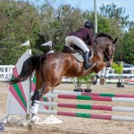 Caribbean Equestrian Association Regional Jumping Challenge Bermuda, November 16 2019-2048