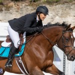 Caribbean Equestrian Association Regional Jumping Challenge Bermuda, November 16 2019-2056