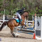 Caribbean Equestrian Association Regional Jumping Challenge Bermuda, November 16 2019-2062