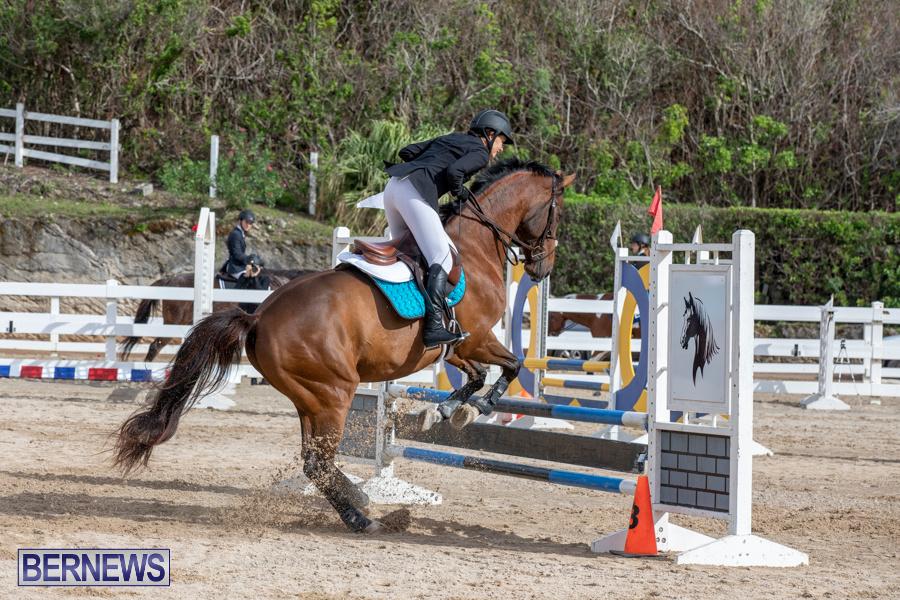 Caribbean-Equestrian-Association-Regional-Jumping-Challenge-Bermuda-November-16-2019-2062