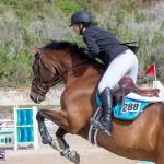 Caribbean Equestrian Association Regional Jumping Challenge Bermuda, November 16 2019-2070