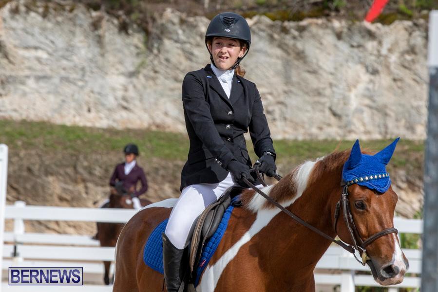 Caribbean-Equestrian-Association-Regional-Jumping-Challenge-Bermuda-November-16-2019-2085