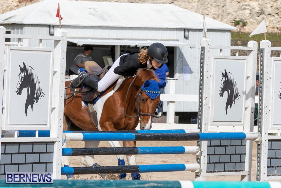 Caribbean-Equestrian-Association-Regional-Jumping-Challenge-Bermuda-November-16-2019-2086