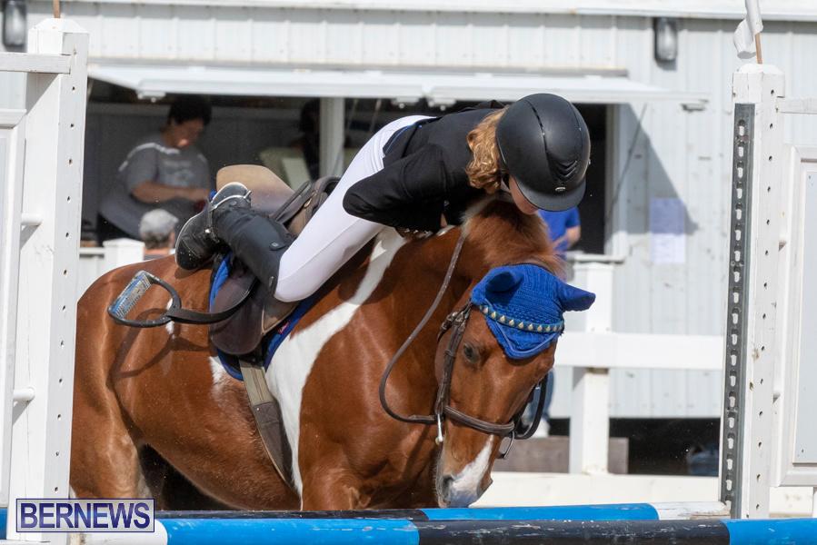 Caribbean-Equestrian-Association-Regional-Jumping-Challenge-Bermuda-November-16-2019-2087
