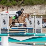Caribbean Equestrian Association Regional Jumping Challenge Bermuda, November 16 2019-2094
