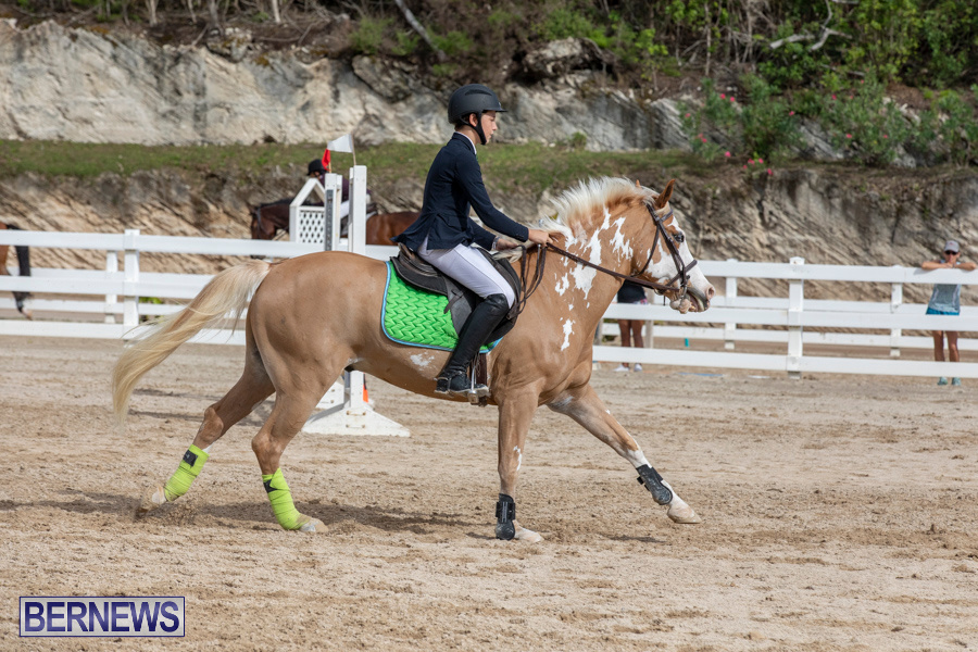 Caribbean-Equestrian-Association-Regional-Jumping-Challenge-Bermuda-November-16-2019-2099
