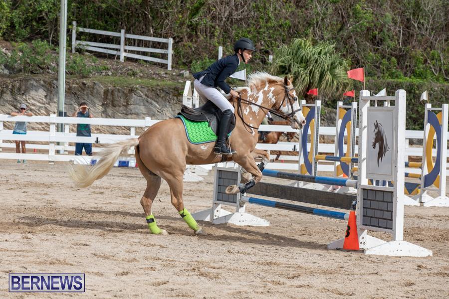 Caribbean-Equestrian-Association-Regional-Jumping-Challenge-Bermuda-November-16-2019-2100