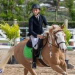 Caribbean Equestrian Association Regional Jumping Challenge Bermuda, November 16 2019-2105