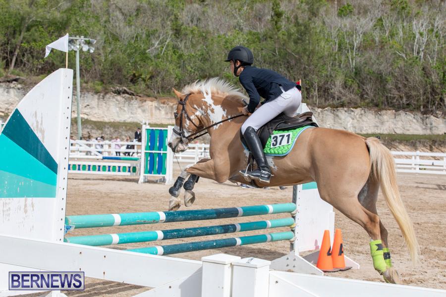 Caribbean-Equestrian-Association-Regional-Jumping-Challenge-Bermuda-November-16-2019-2110
