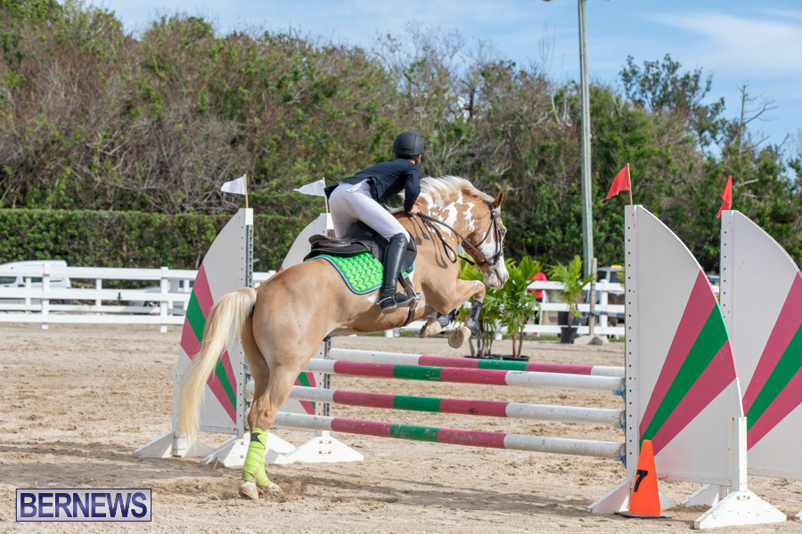 Caribbean-Equestrian-Association-Regional-Jumping-Challenge-Bermuda-November-16-2019-2124