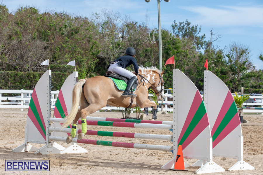 Caribbean-Equestrian-Association-Regional-Jumping-Challenge-Bermuda-November-16-2019-2125