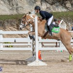 Caribbean Equestrian Association Regional Jumping Challenge Bermuda, November 16 2019-2130