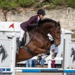 Caribbean Equestrian Association Regional Jumping Challenge Bermuda, November 16 2019-2134