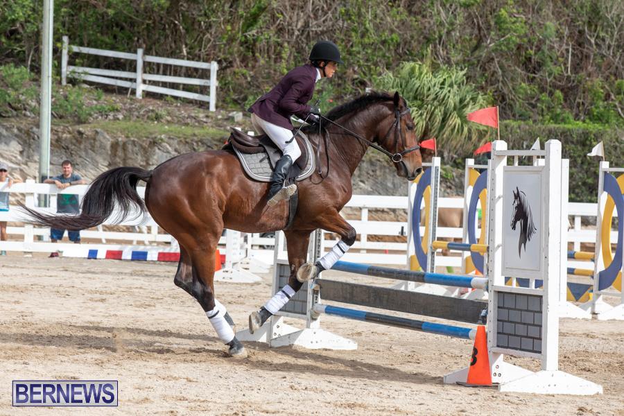 Caribbean-Equestrian-Association-Regional-Jumping-Challenge-Bermuda-November-16-2019-2141