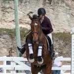 Caribbean Equestrian Association Regional Jumping Challenge Bermuda, November 16 2019-2157