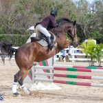 Caribbean Equestrian Association Regional Jumping Challenge Bermuda, November 16 2019-2162