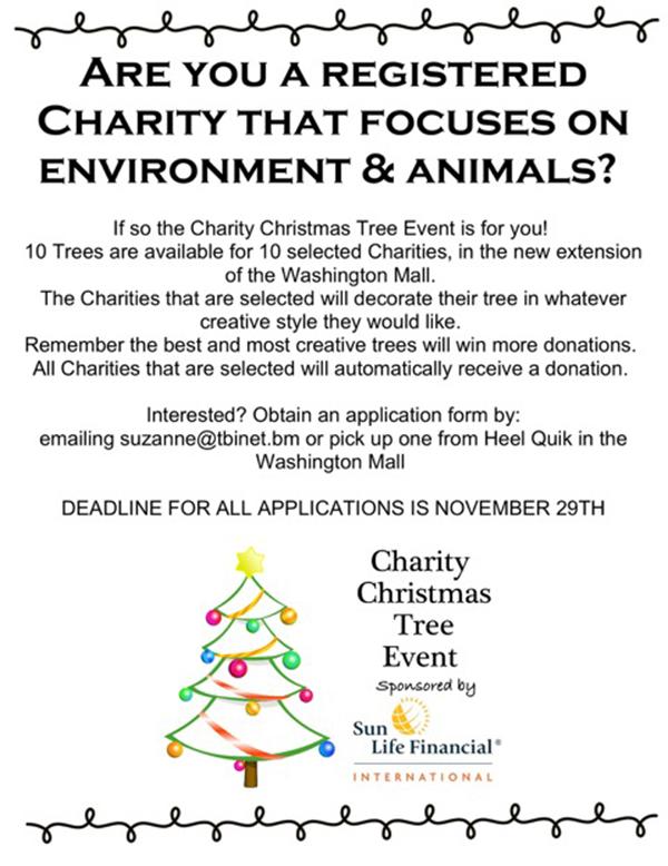 Charity Christmas Tree Bermuda Nov 2019