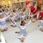 Friends of Hospice Christmas Town Bermuda, November 30 2019-4357