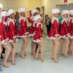 Friends of Hospice Christmas Town Bermuda, November 30 2019-4365