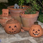 Halloween Bermuda, October 31 2019-0149
