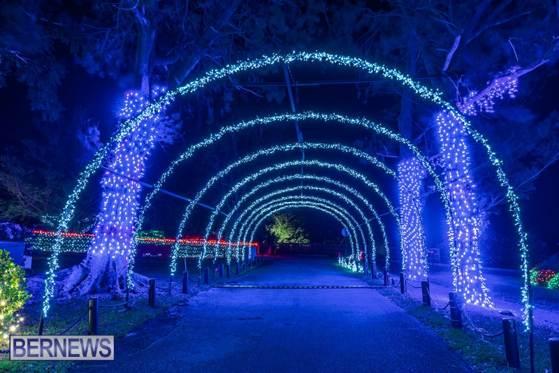 2019 BELCO Festival Of Lights Botanical Gardens Bermuda (10)