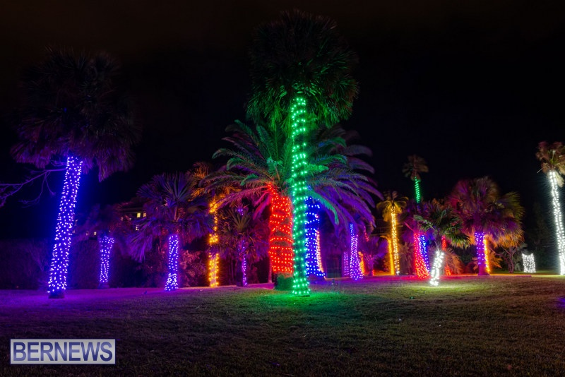 2019 BELCO Festival Of Lights Botanical Gardens Bermuda (5)