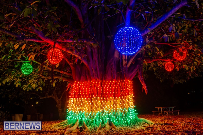 2019 BELCO Festival Of Lights Botanical Gardens Bermuda (6)