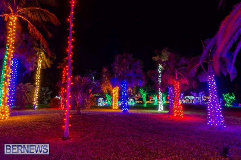 2019 BELCO Festival Of Lights Botanical Gardens Bermuda (7)