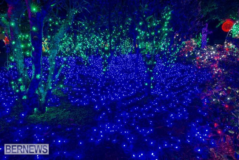 2019 BELCO Festival Of Lights Botanical Gardens Bermuda (8)