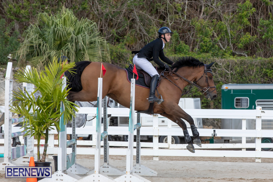 Bermuda-Equestrian-Federation-Welcome-Home-Show-December-7-2019-0451