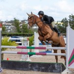Bermuda Equestrian Federation Welcome Home Show, December 7 2019-0461