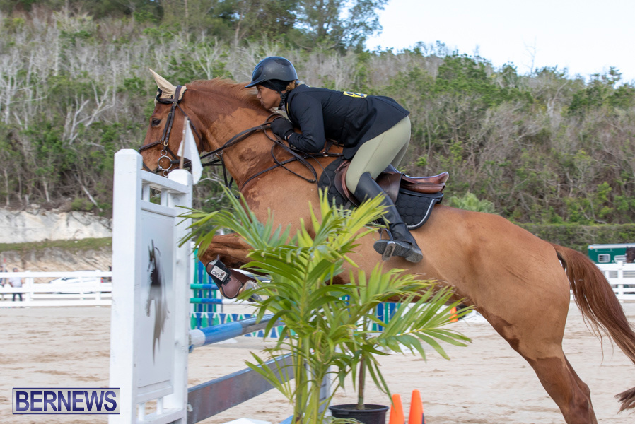 Bermuda-Equestrian-Federation-Welcome-Home-Show-December-7-2019-0469