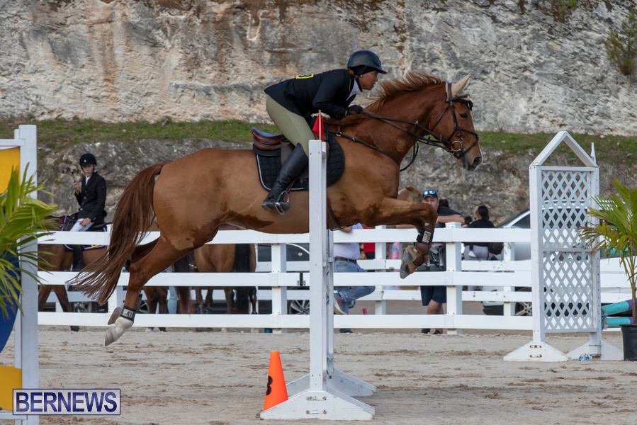 Bermuda-Equestrian-Federation-Welcome-Home-Show-December-7-2019-0475