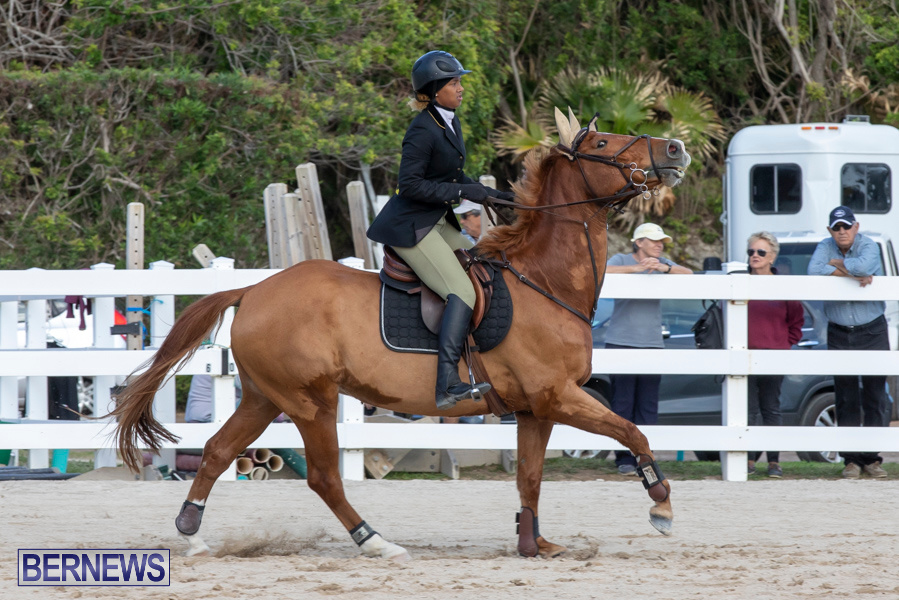 Bermuda-Equestrian-Federation-Welcome-Home-Show-December-7-2019-0477