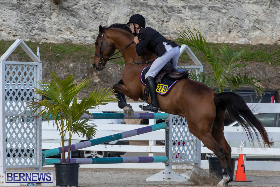 Bermuda-Equestrian-Federation-Welcome-Home-Show-December-7-2019-0479
