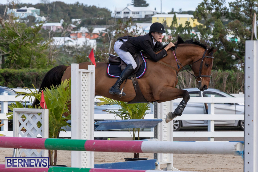 Bermuda-Equestrian-Federation-Welcome-Home-Show-December-7-2019-0489
