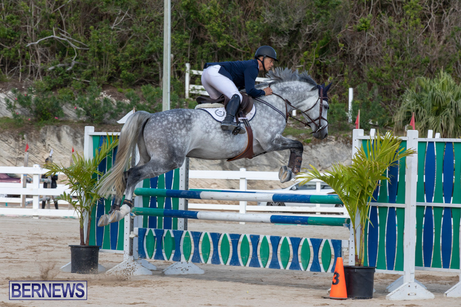 Bermuda-Equestrian-Federation-Welcome-Home-Show-December-7-2019-0497