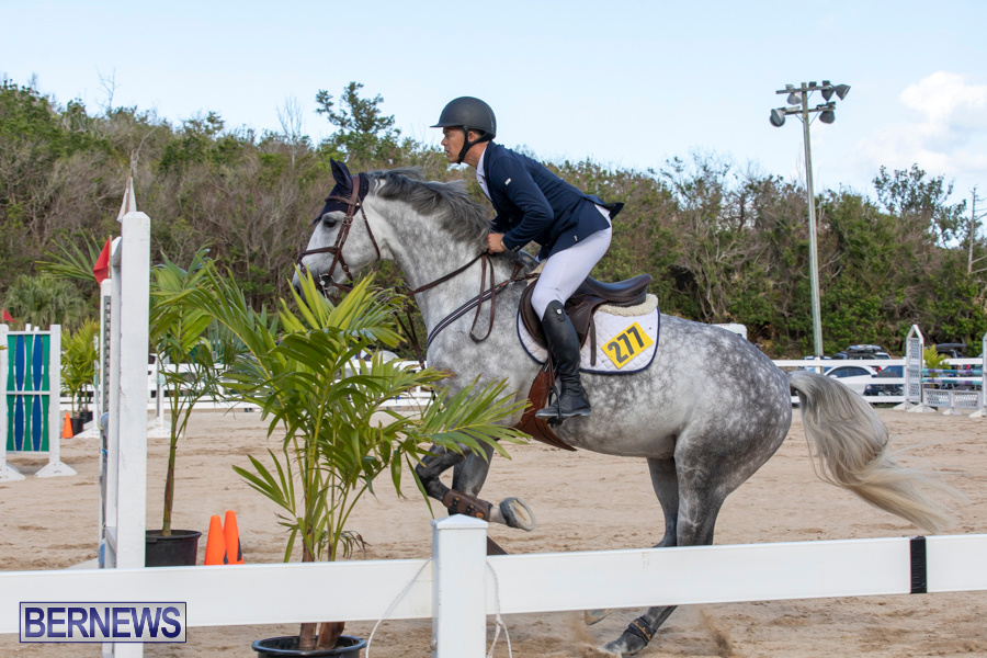 Bermuda-Equestrian-Federation-Welcome-Home-Show-December-7-2019-0501