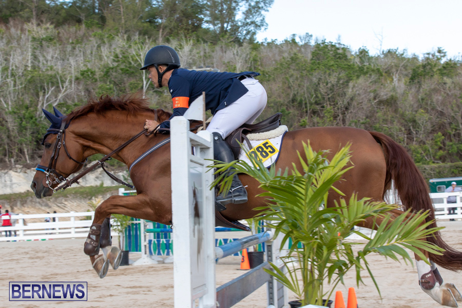 Bermuda-Equestrian-Federation-Welcome-Home-Show-December-7-2019-0525