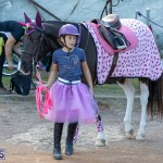 Bermuda Equestrian Federation Welcome Home Show, December 7 2019-0541