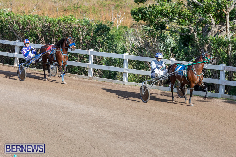 DHPC-Harness-Pony-Racing-Bermuda-December-26-2019-5965
