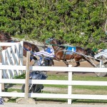 DHPC Harness Pony Racing Bermuda, December 26 2019-6011