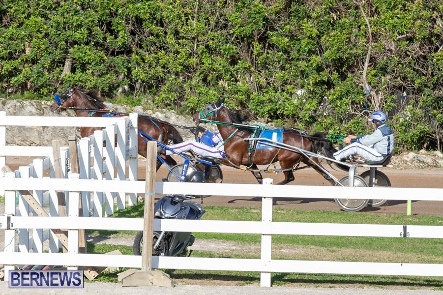 DHPC-Harness-Pony-Racing-Bermuda-December-26-2019-6011