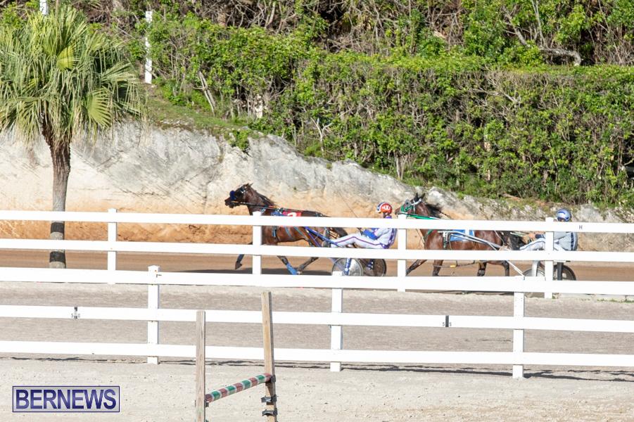 DHPC-Harness-Pony-Racing-Bermuda-December-26-2019-6014