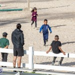 DHPC Harness Pony Racing Bermuda, December 26 2019-6086