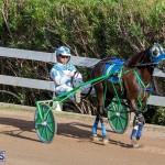 DHPC Harness Pony Racing Bermuda, December 26 2019-6088